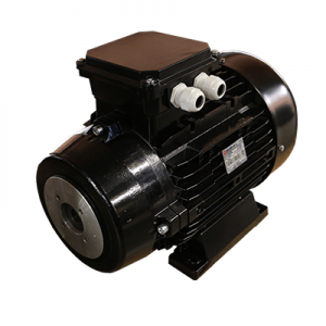 18.5kW Electric Motor - Hollow Double Flange